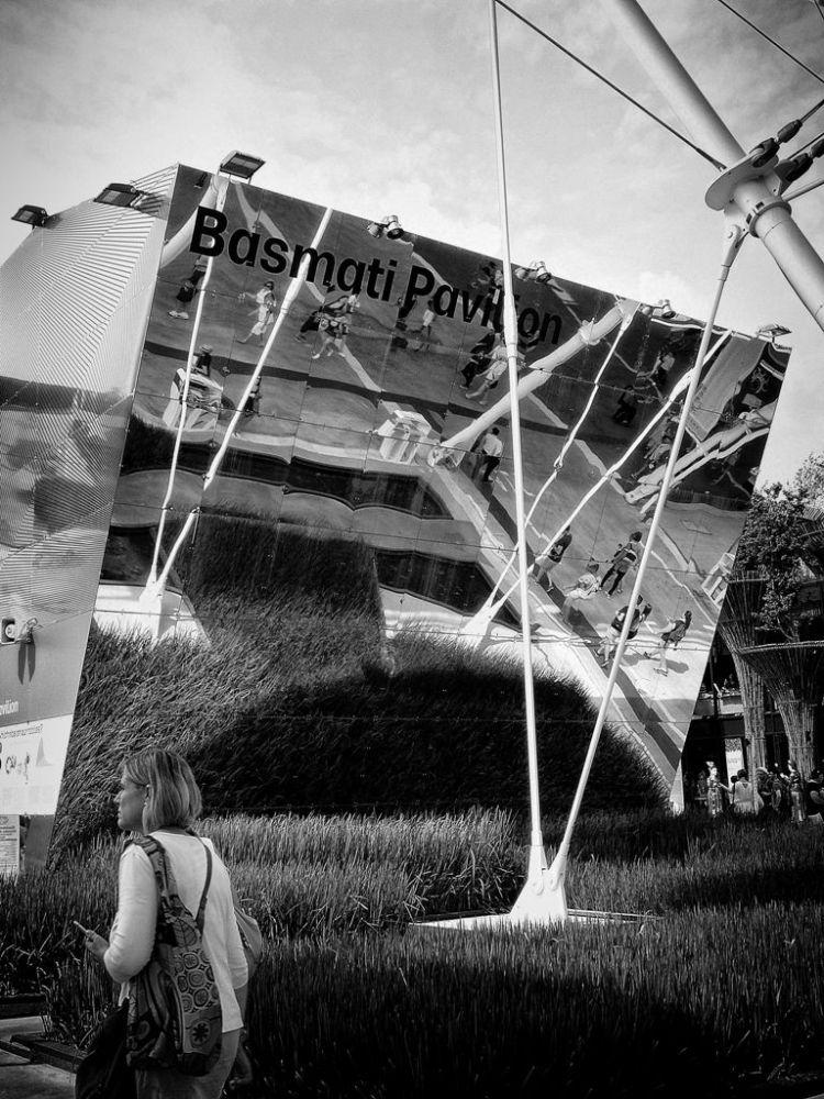 Expo Milano 2015 : nutrire il Pianeta, energia per la Vita. (2/6)